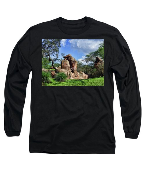 Lions On The Rock Long Sleeve T-Shirt by B Wayne Mullins