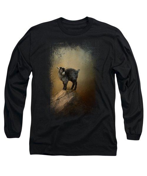 Little Rock Climber Long Sleeve T-Shirt by Jai Johnson