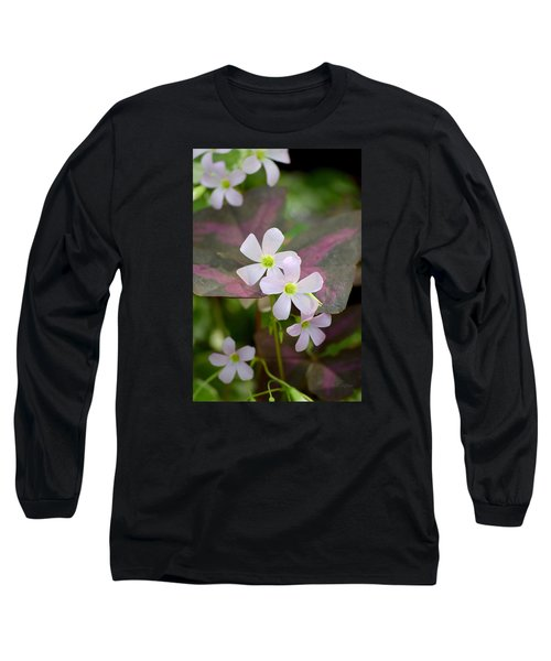 Little Twinkles Long Sleeve T-Shirt by Deborah  Crew-Johnson