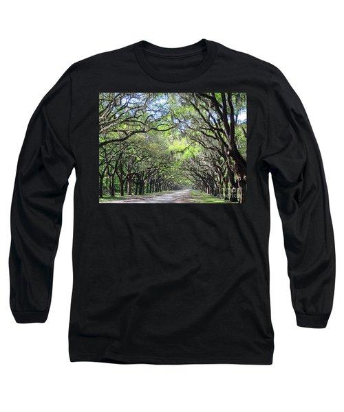 Live Oak Canopy Long Sleeve T-Shirt
