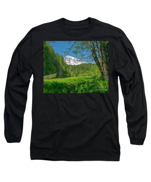 Longmire Meadows 0761 Long Sleeve T-Shirt by Chuck Flewelling