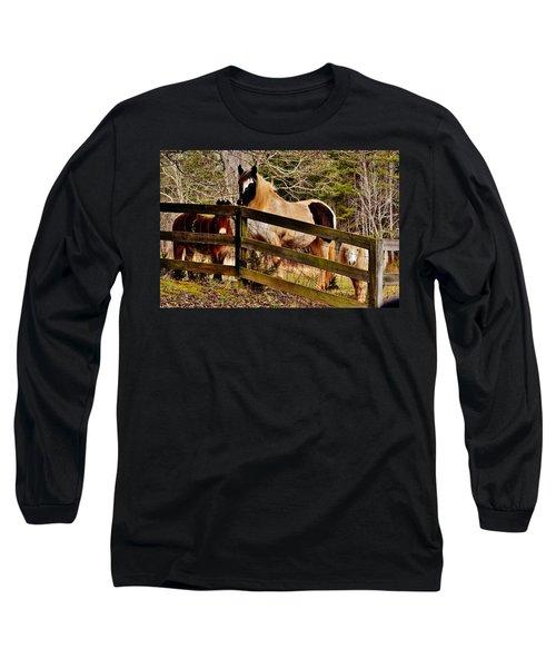 Look At Me Long Sleeve T-Shirt
