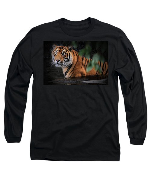 Looking Oh So Sweet Long Sleeve T-Shirt