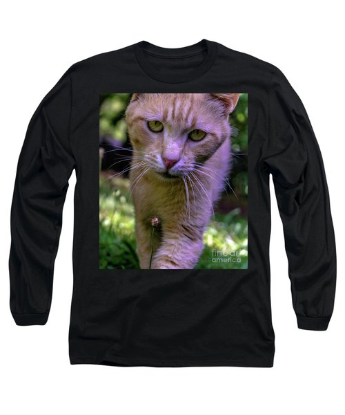 Lovey Feral Cat Portrait 0369a Long Sleeve T-Shirt