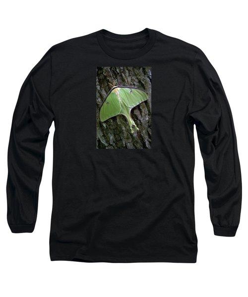 Luna Moth Long Sleeve T-Shirt by Marie Hicks