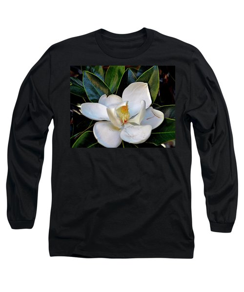Magnolia Long Sleeve T-Shirt by Helen Haw