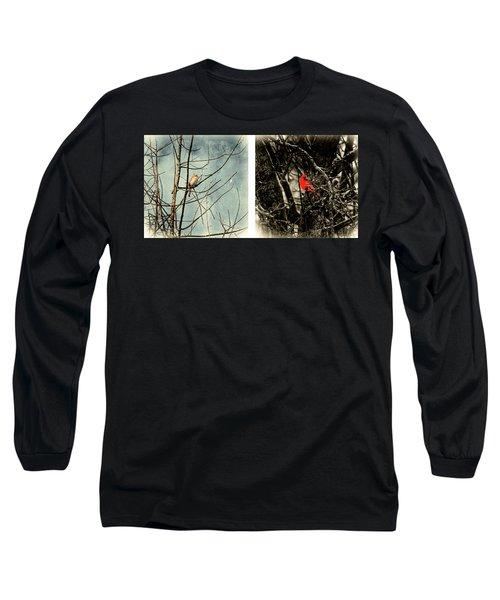 Male And Female Cardinal Long Sleeve T-Shirt