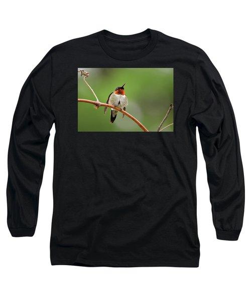 Male Ruby Throated Hummingbird Long Sleeve T-Shirt