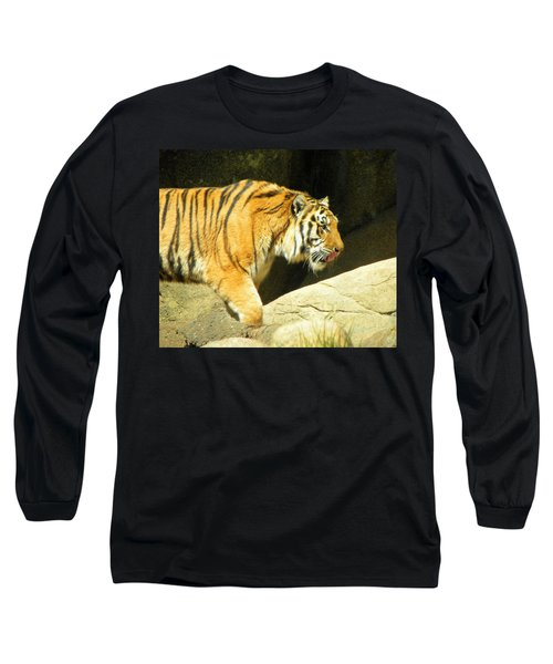 Long Sleeve T-Shirt featuring the photograph Meal Time by Sandi OReilly
