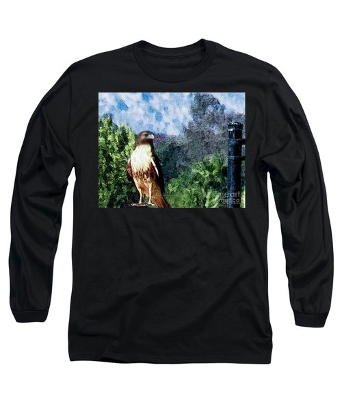 Long Sleeve T-Shirt featuring the photograph Menifee Falcon by Rhonda Strickland
