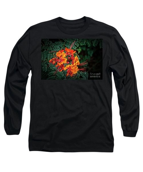 Long Sleeve T-Shirt featuring the photograph Mexican Bird Of Paradise by Robert Bales