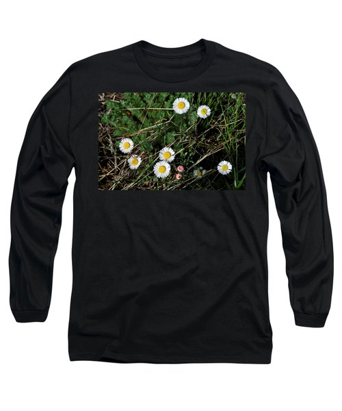 Mini Daisies Long Sleeve T-Shirt