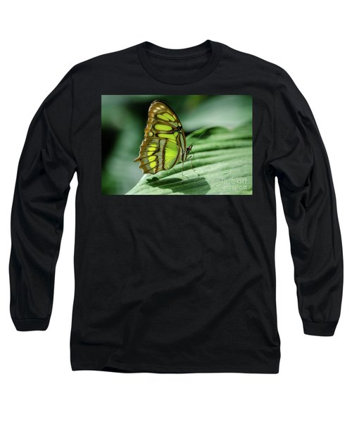 Miss Green Long Sleeve T-Shirt