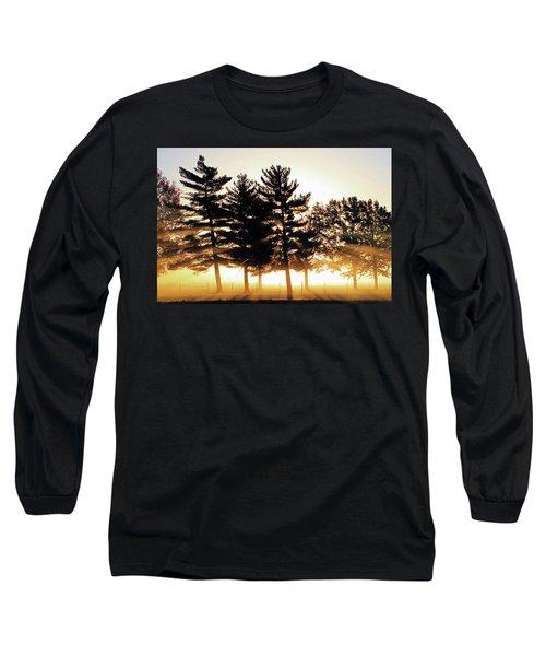 Missouri Tree Line Long Sleeve T-Shirt