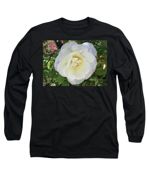 Long Sleeve T-Shirt featuring the photograph Moms Rose by Daniel Hebard