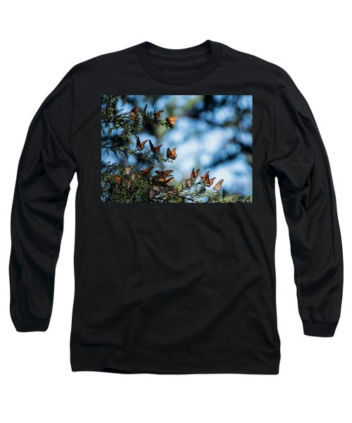 Monarchs In The Tree Long Sleeve T-Shirt