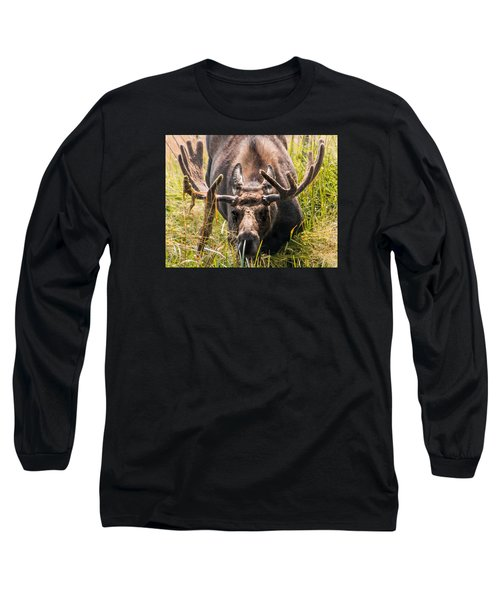 Moose Long Sleeve T-Shirt by Cathy Donohoue