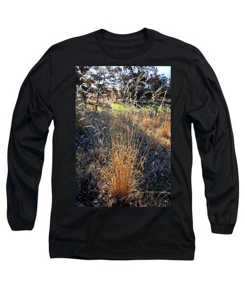 Morning Sun Backlights Fall Grasses In Glacial Park Long Sleeve T-Shirt