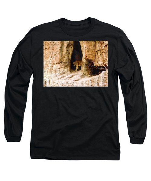 Mountain Lion In The Desert Long Sleeve T-Shirt