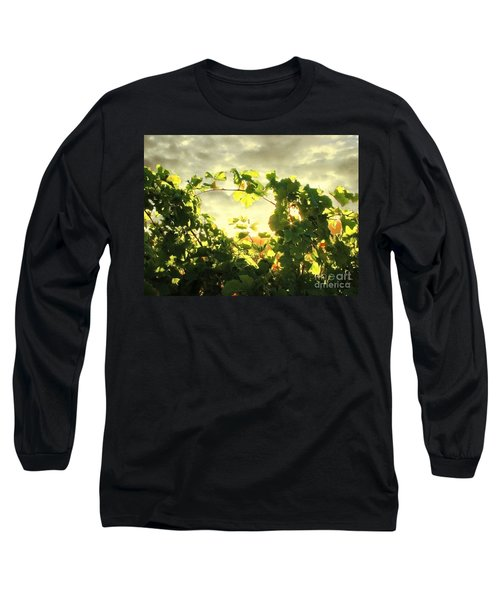 Napa Dusk Long Sleeve T-Shirt by Ellen Cotton