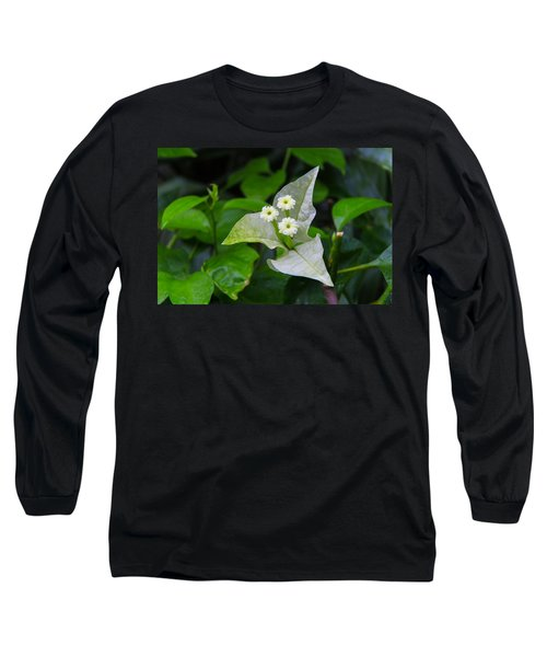 Nature's Triplets Long Sleeve T-Shirt