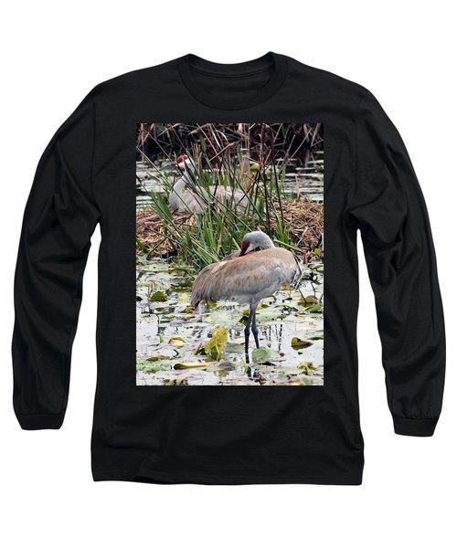 Nesting Sandhill Crane Pair Long Sleeve T-Shirt