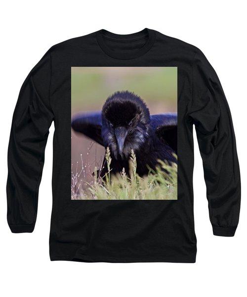 Nevermore Long Sleeve T-Shirt by Todd Kreuter