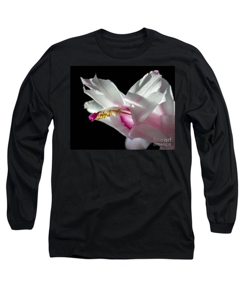 November Splendor Long Sleeve T-Shirt