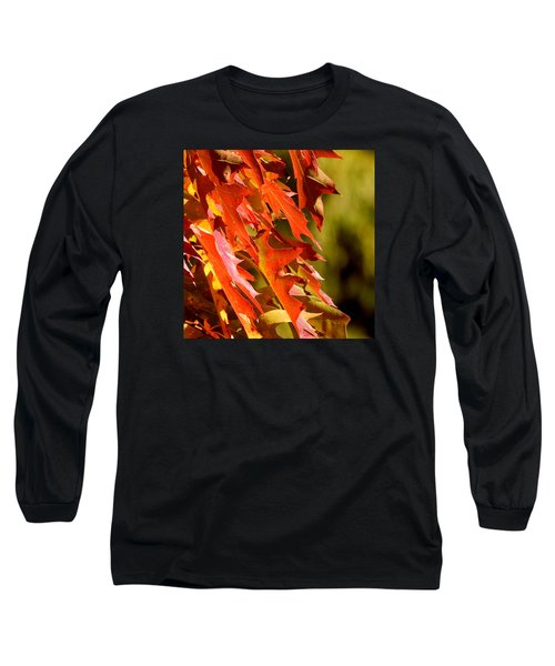 October Oak Leaves Long Sleeve T-Shirt by Brian Chase