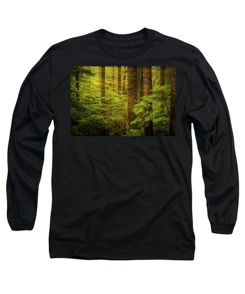 Of Elves And Faeries Long Sleeve T-Shirt