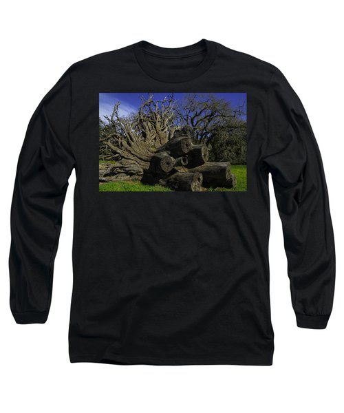 Old Tree Roots Long Sleeve T-Shirt