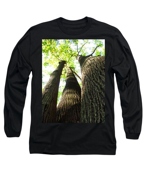 Oldgrowth Tulip Tree Long Sleeve T-Shirt