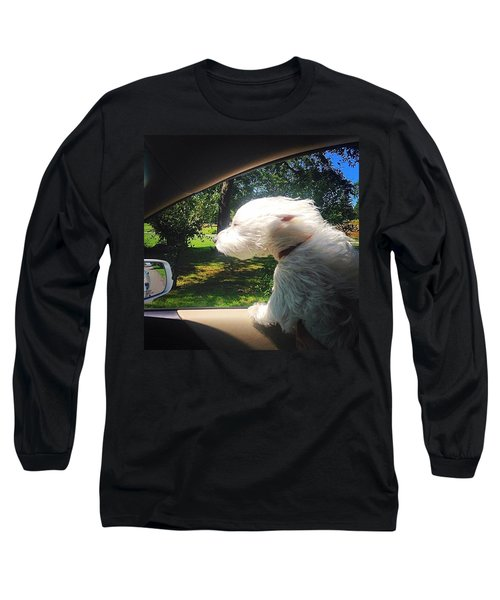Trip To The Groomer Long Sleeve T-Shirt