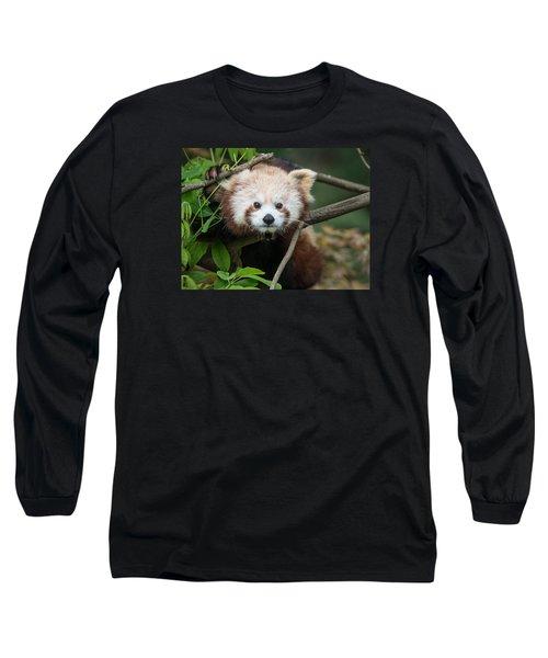 One Intense Critter Long Sleeve T-Shirt by Greg Nyquist