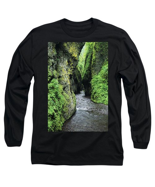 Oneonta Creek And Gorge Long Sleeve T-Shirt