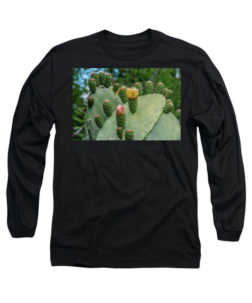 Opuntia Cactus Long Sleeve T-Shirt by Patrick Boening