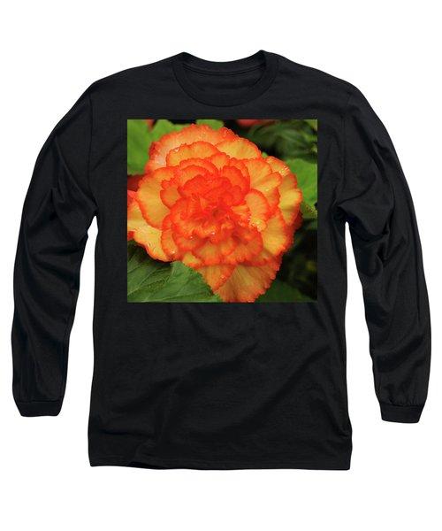 Orange Begonia Long Sleeve T-Shirt by Haleh Mahbod