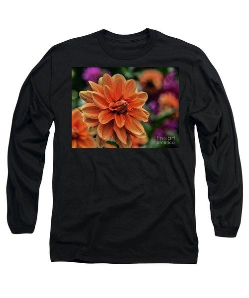 Orange Dahlias Long Sleeve T-Shirt by Shirley Mangini