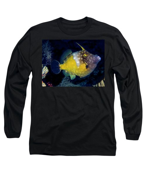 Long Sleeve T-Shirt featuring the photograph Orange Filefish by Jean Noren