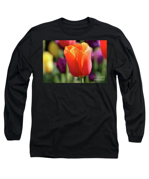 Orange Tulip In Franklin Park Long Sleeve T-Shirt