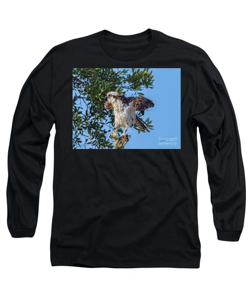 Osprey With Meal Long Sleeve T-Shirt