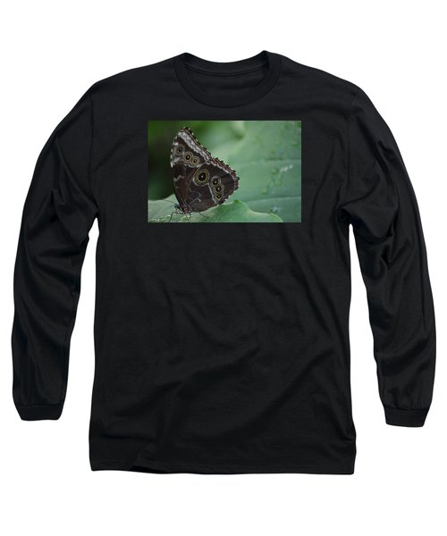 Owl Butterfly Long Sleeve T-Shirt by Linda Geiger
