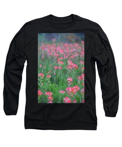 Paint Brushes For Texas Long Sleeve T-Shirt by Carolina Liechtenstein