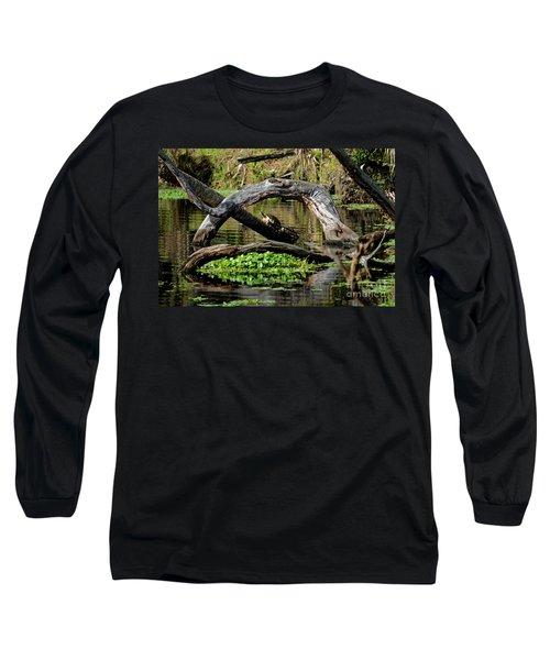 Painted Turtles Long Sleeve T-Shirt by Paul Mashburn