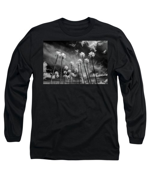 Palms Long Sleeve T-Shirt by Sean Foster