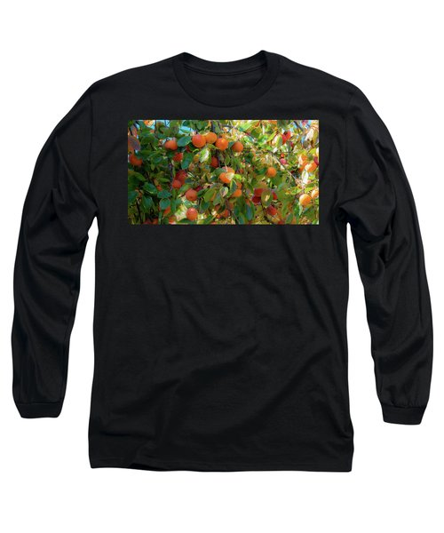 Paradise For Persimmons Long Sleeve T-Shirt