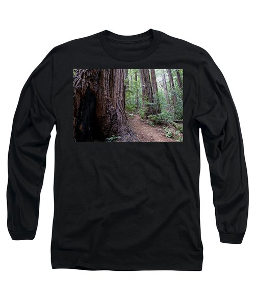 Pathway Through A Redwood Forest On Mt Tamalpais Long Sleeve T-Shirt