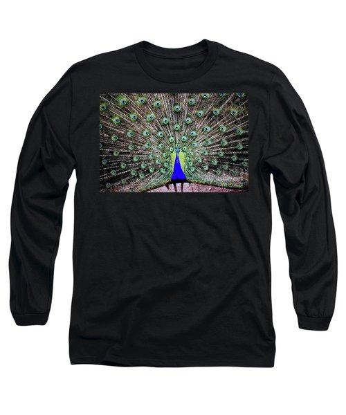 Peacock Long Sleeve T-Shirt by Vivian Krug Cotton