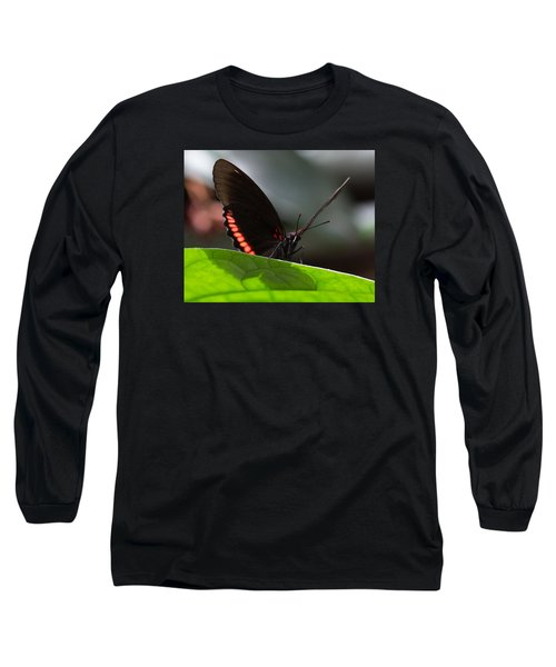 Peek-a-boo 8x10 Long Sleeve T-Shirt