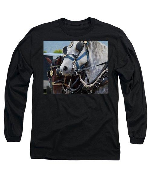 Percheron Horses Long Sleeve T-Shirt by Theresa Tahara